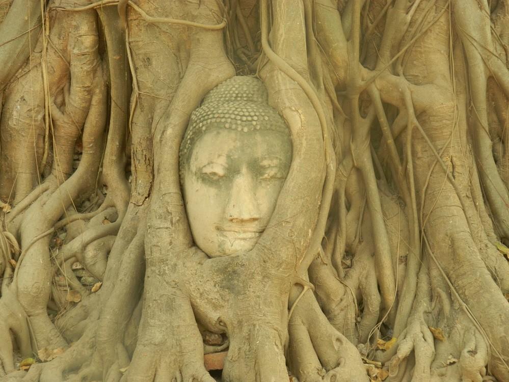 thailande-ayuttayah-au-bout-de-la-terre