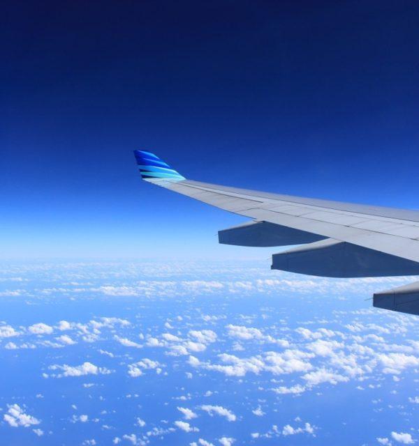 wing-221526_1280-600x640